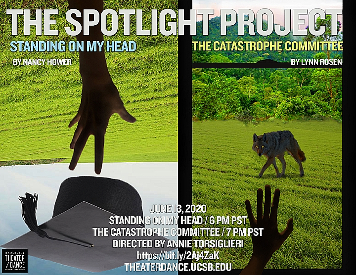 Interview: Lynn Rosen on Her Play 'The Catastrophe Committee'